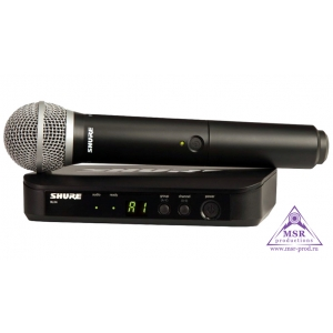 SHURE BLX24E/PG58 M17