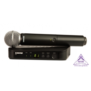 SHURE BLX24E/SM58 M17
