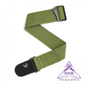 Planet Waves PWS107